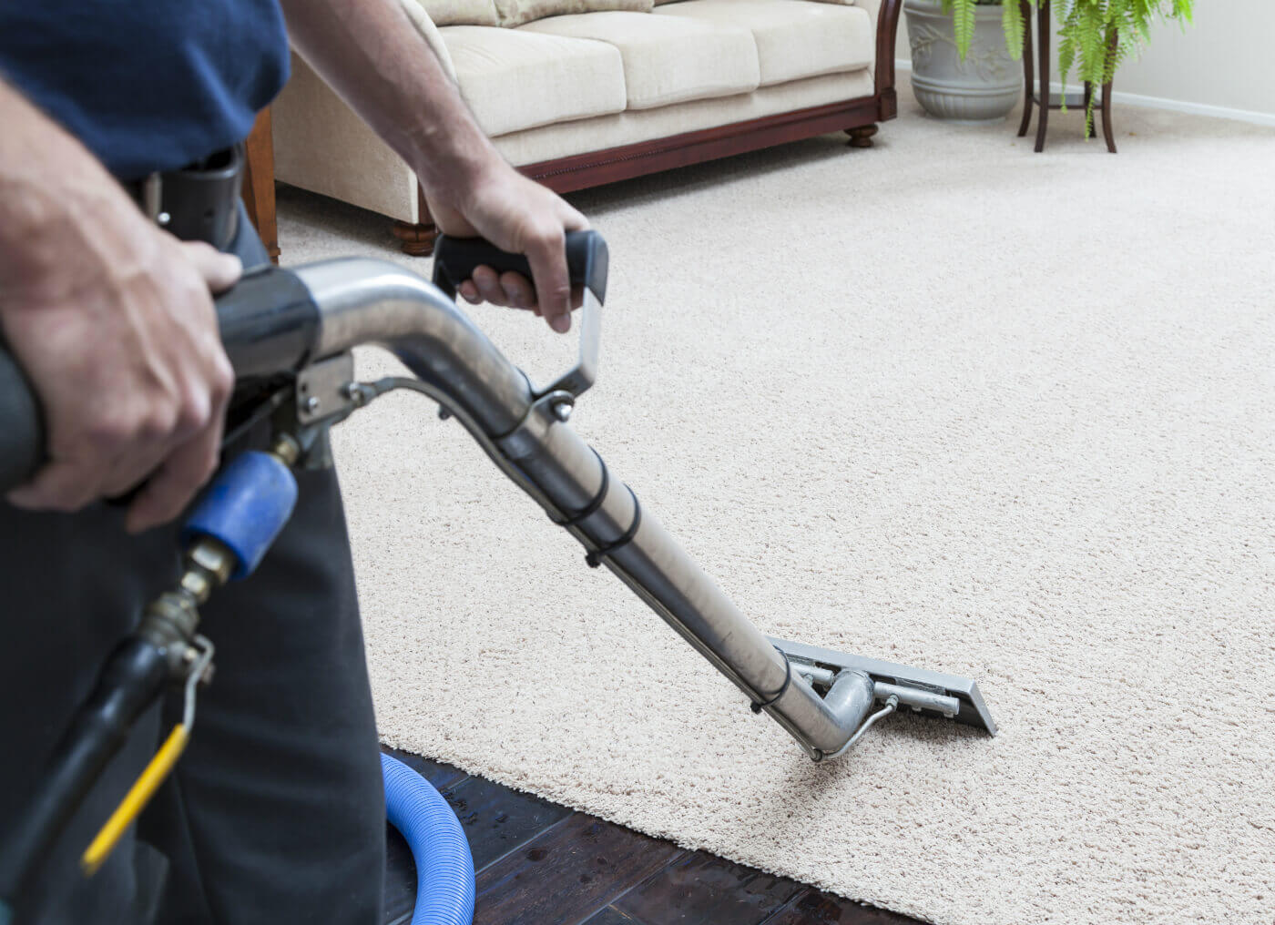 Carpet Cleaning Steam Green