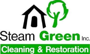 Steam Green Illinois Carpet Furniture And Hardwood