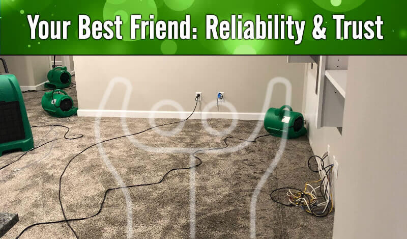 Your Best Friend: Reliability & Trust in Peoria IL & Bloomington IL